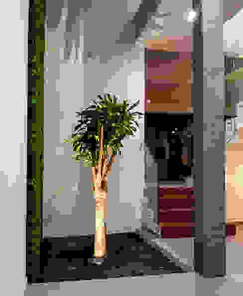 Estilo Homes Pasillos, vestíbulos y escaleras minimalistas