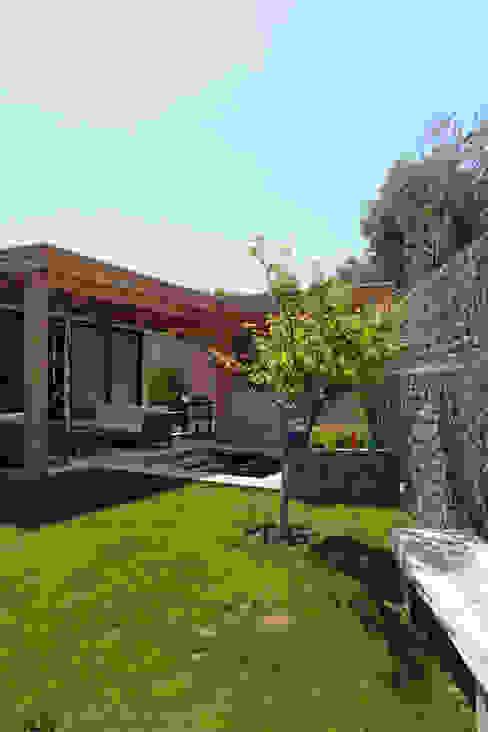 Rustic style gardens by ESTUDIO BASE ARQUITECTOS Rustic