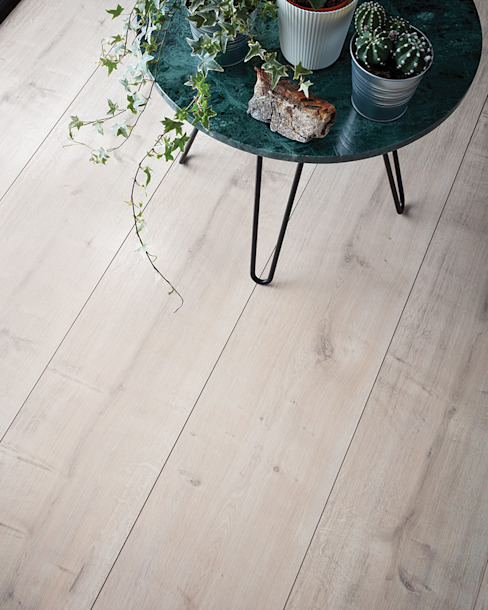Wembury Winter Oak Dinding & Lantai Modern Oleh Woodpecker Flooring Modern Kayu Wood effect