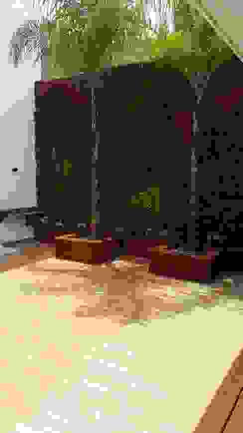Muro verde de Stann Designs S.A de C.V. Moderno