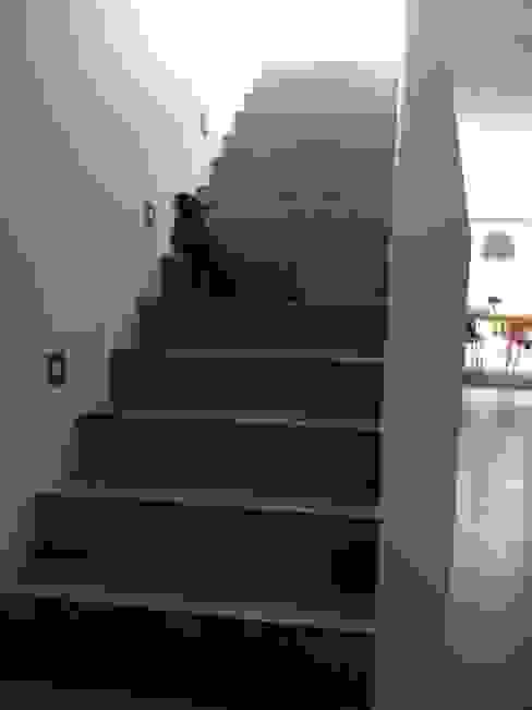 Couloir, entrée, escaliers modernes par Carsten Krafft Die Architektur Moderne