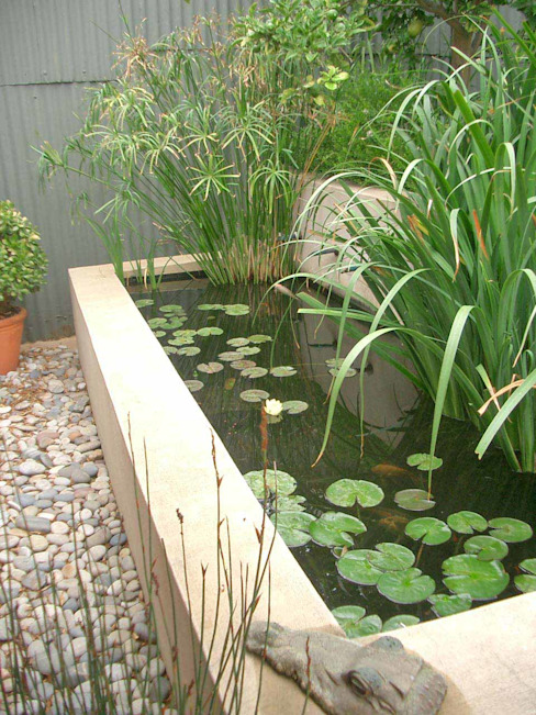 pond Eclectic style garden by Till Manecke:Architect Eclectic