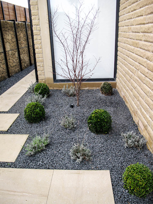 A splash of green Modern style gardens by Yorkshire Gardens Modern