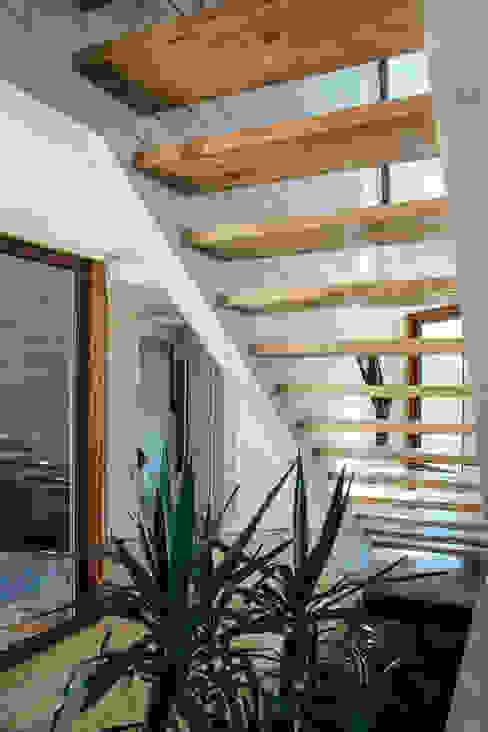 acceso, escalera Pasillos, halls y escaleras rústicos de Thomas Löwenstein arquitecto Rústico Madera Acabado en madera