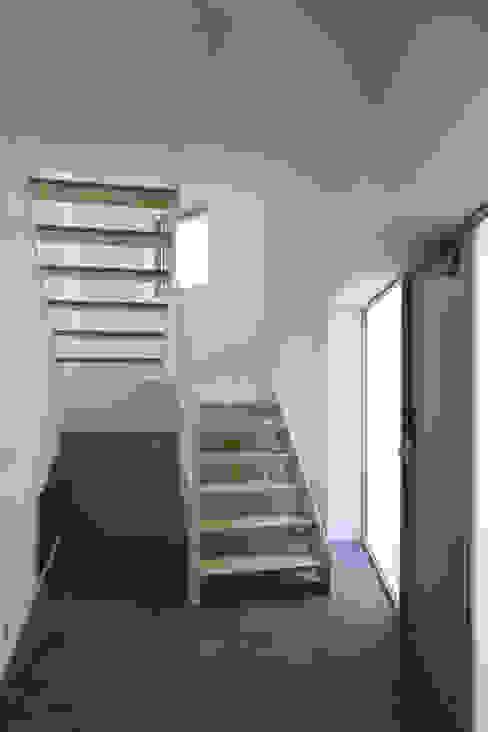 Hành lang, sảnh & cầu thang phong cách hiện đại bởi supa schweitzer song Hiện đại
