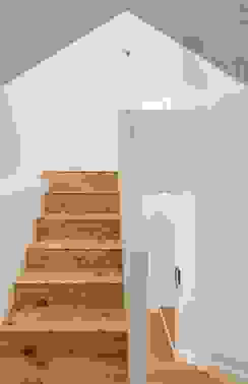 現代風玄關、走廊與階梯 根據 supa schweitzer song 現代風
