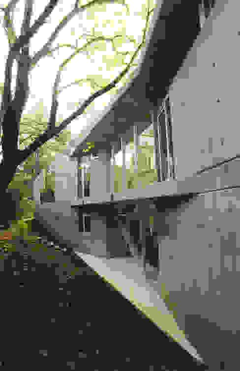 CASA en C.U.B.A. Casas modernas: Ideas, imágenes y decoración de MZM | Maletti Zanel Maletti arquitectos Moderno