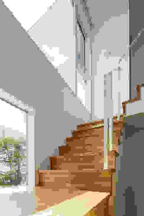 階段 株式会社seki.design モダンスタイルの 玄関&廊下&階段