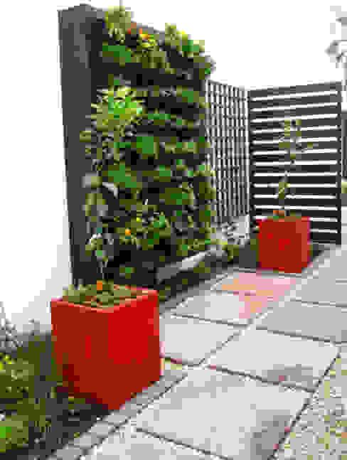Jardines de estilo  por Young Landscape Design Studio,