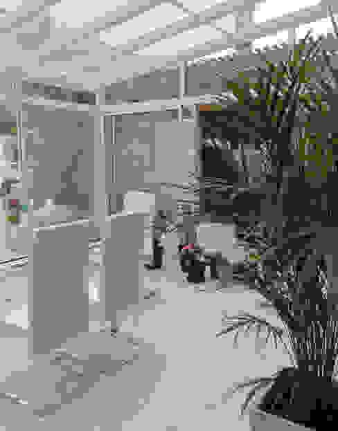 Jardines de invierno de estilo moderno de ARQUITECTA MORIELLO Moderno