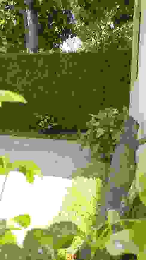 Jardines de estilo moderno de 3HOUS Moderno