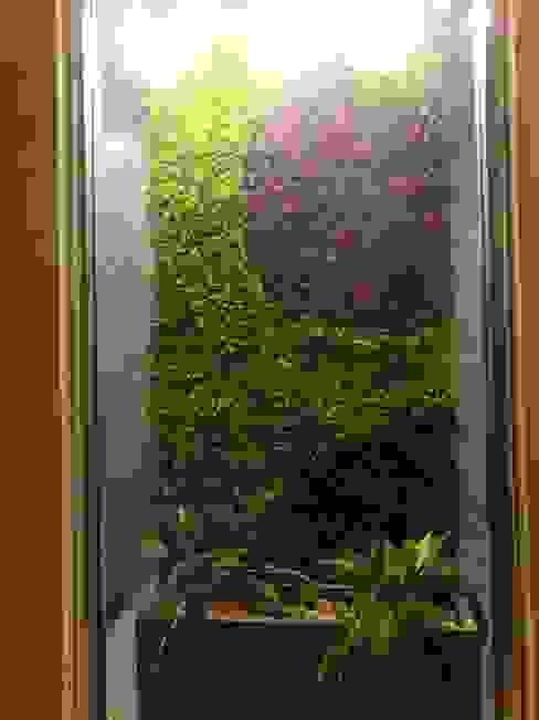 acabado final de muro . Jardines de estilo moderno de 3HOUS Moderno