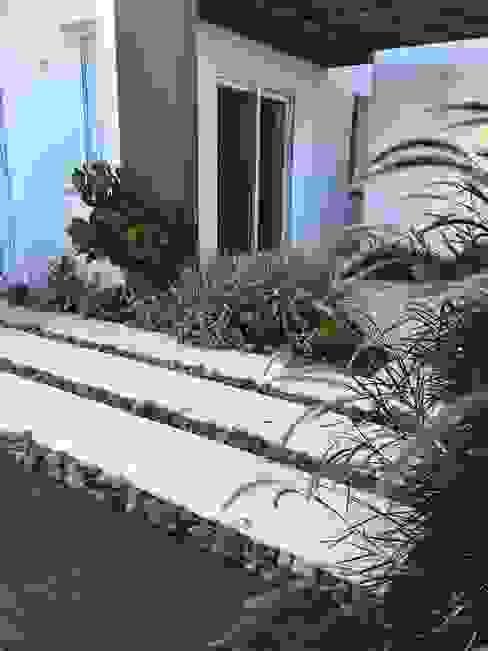Modern style gardens by TM&LH_ arq.arte - Tatiana Moraes e Lucia Helena Modern