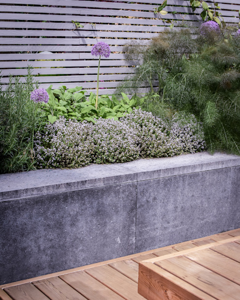 Panting and concrete clad retaining wall:  Garden by Tom Massey Landscape & Garden Design,