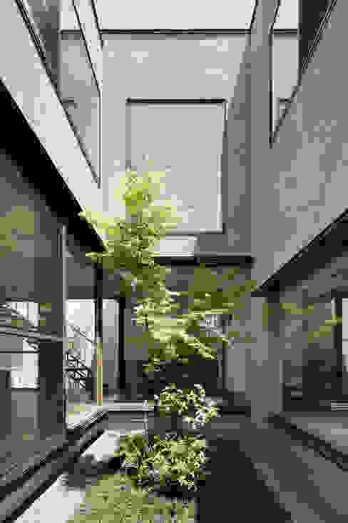 中庭 atelier137 ARCHITECTURAL DESIGN OFFICE モダンな庭