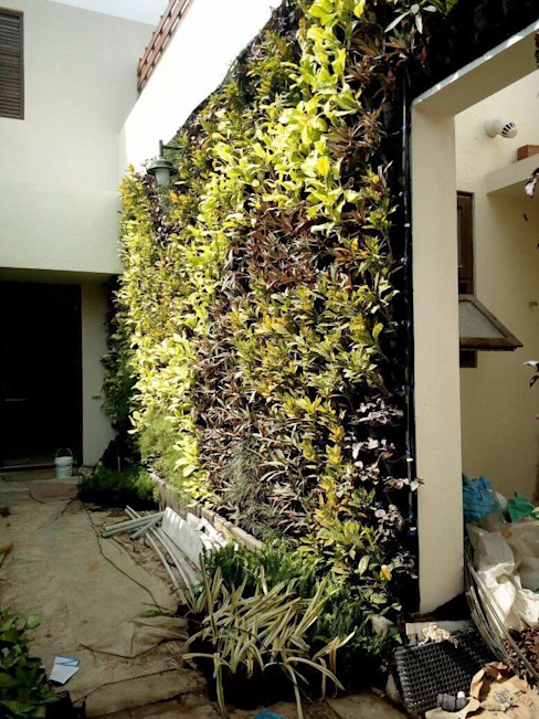 "After plantation on vertical gardens: {:asian=>""asian"", :classic=>""classic"", :colonial=>""colonial"", :country=>""country"", :eclectic=>""eclectic"", :industrial=>""industrial"", :mediterranean=>""mediterranean"", :minimalist=>""minimalist"", :modern=>""modern"", :rustic=>""rustic"", :scandinavian=>""scandinavian"", :tropical=>""tropical""}  by Vertical Gardens, Lifewall,"