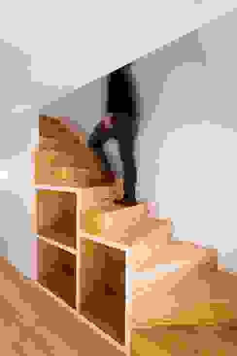 Caldeireiros Houses Clínica de Arquitectura Minimalistischer Flur, Diele & Treppenhaus Holz Mehrfarbig