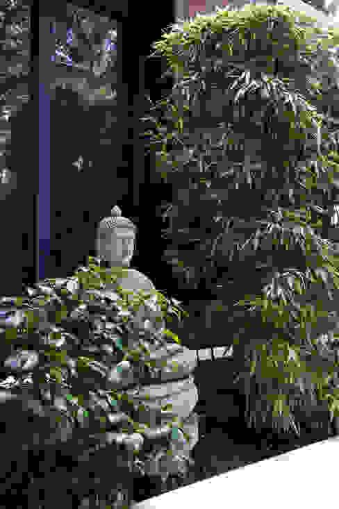 Jardin de style  par Earth Designs, Moderne