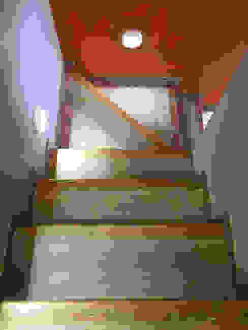 Juchitan Decor Erika Winters Design Pasillos, vestíbulos y escaleras modernos