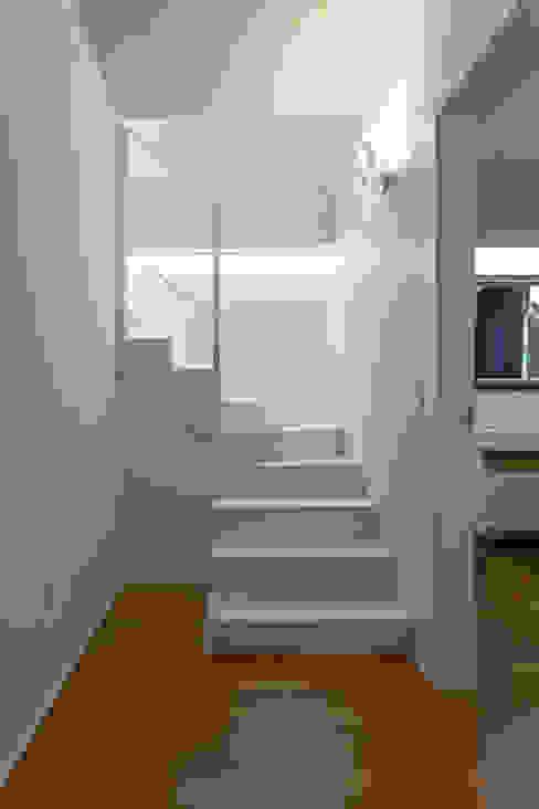 Couloir, entrée, escaliers modernes par stefania talevi Moderne