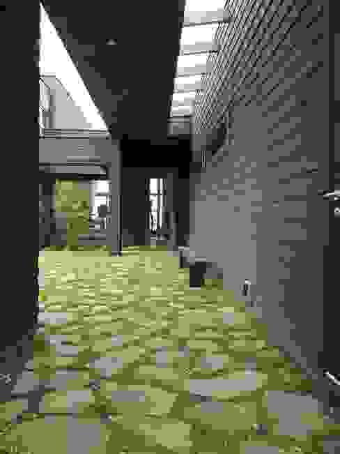 根據 David y Letelier Estudio de Arquitectura Ltda. 田園風