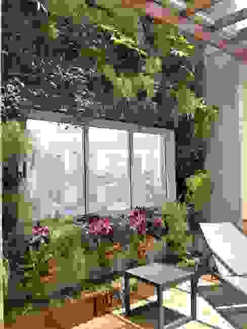 homify Modern style gardens