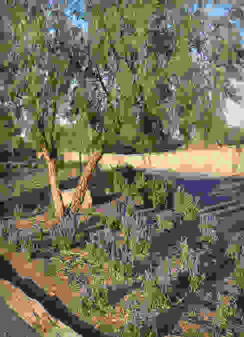 Salvias azules Jardines rurales de Hábitas Rural