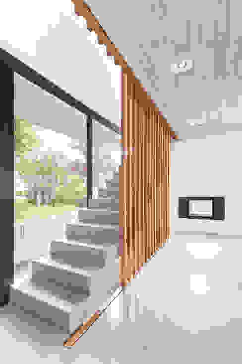 Wohnhaus D FFM-ARCHITEKTEN. Tovar + Tovar PartGmbB Moderne Fenster & Türen