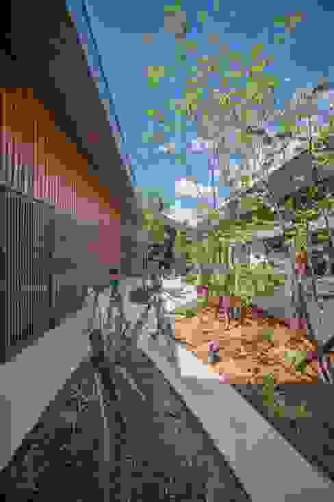 庭 モダンな庭 の 武藤圭太郎建築設計事務所 モダン 木 木目調