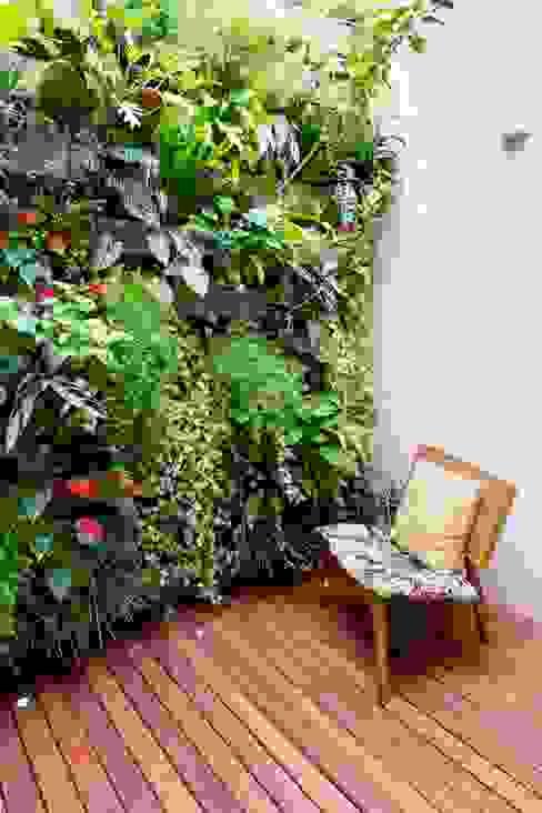Isa Ramoni Arquitetura Modern conservatory