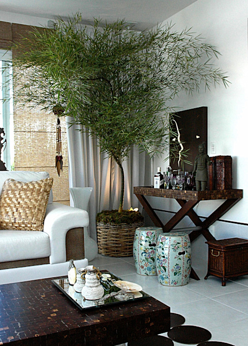 STUDIO AGUIAR E DINIS Salones de estilo tropical