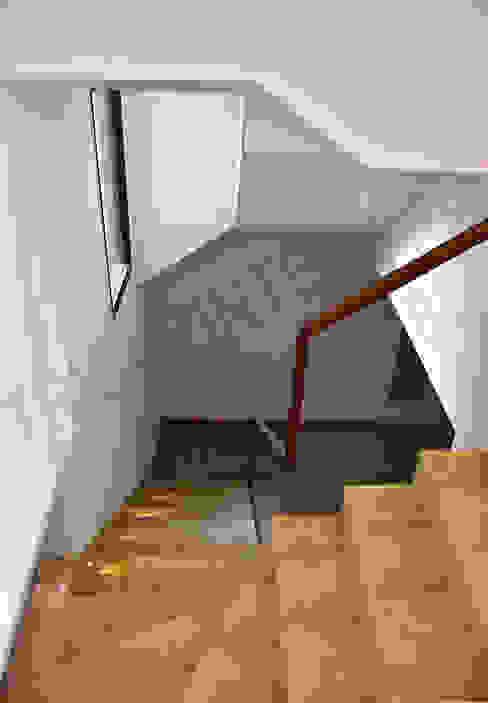 Villa Tribuz Interiors Pvt. Ltd. Stairs