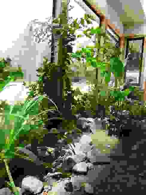 Interior jardin 2 Jardines de invierno de estilo rural de casa rural - Arquitectos en Coyhaique Rural Derivados de madera Transparente