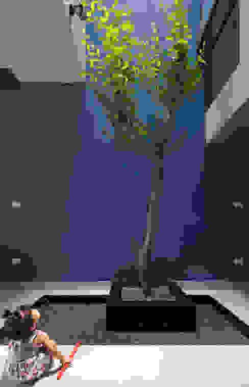 Khoảng vườn nhỏ sẽ mang đến không khí trong lành đảm bảo sức khỏe cho bé. bởi Công ty TNHH TK XD Song Phát Châu Á Đồng / Đồng / Đồng thau