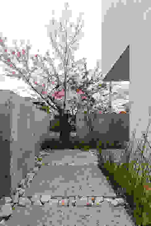 桜と暮らす家 Kenji Yanagawa Architect and Associates モダンな庭 タイル 白色