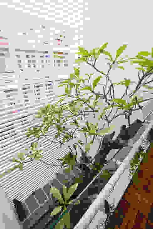 Projekty,  Okna dachowe zaprojektowane przez Công ty TNHH Xây Dựng TM – DV Song Phát, Nowoczesny