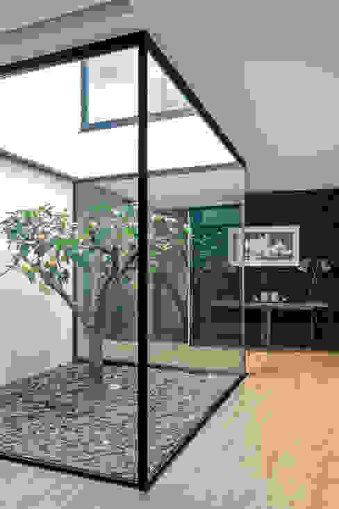 Moderner Flur, Diele & Treppenhaus von Bruno Braumann - Fotografia de Arquitectura e Interiores Modern