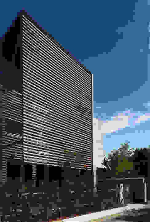 ひばりが丘、ギャラリーを意識した住まい、杉板化粧型枠コンクリート打ち放し外壁 JWA,Jun Watanabe & Associates モダンな 家