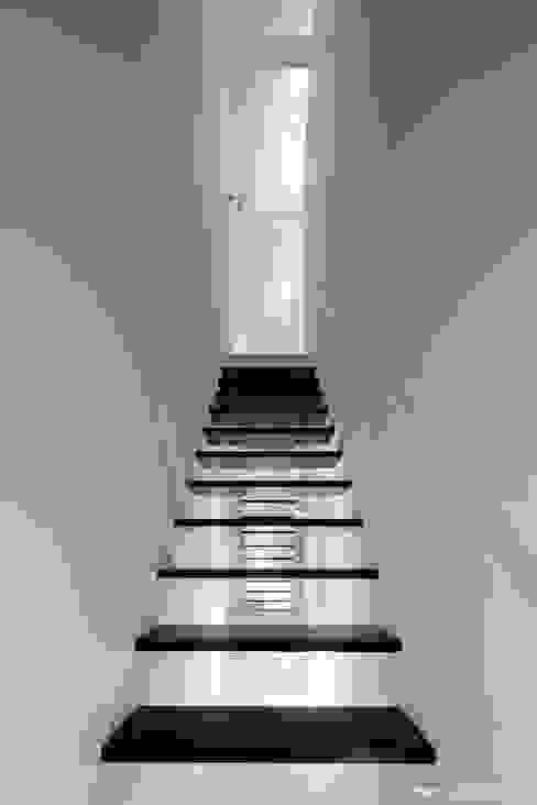 2つの階段 石川淳建築設計事務所 階段 木 白色