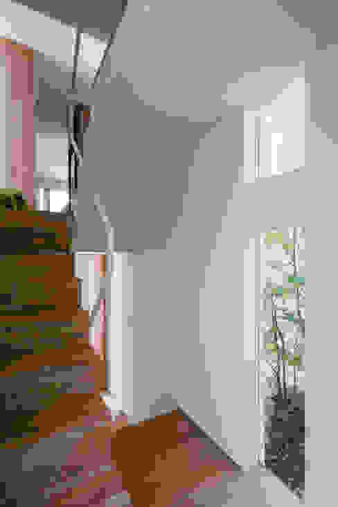 井の頭の家 / House in Inokashira 庄司寛建築設計事務所 / HIROSHI SHOJI ARCHITECT&ASSOCIATES 階段