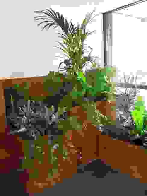 Plantenbakken met groene planten studioMERZ Moderne gangen, hallen & trappenhuizen