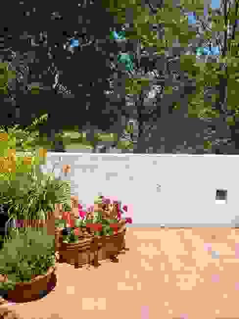 casa co-ti: Terrazas de estilo  por Daniel Cota Arquitectura | Despacho de arquitectos | Cancún