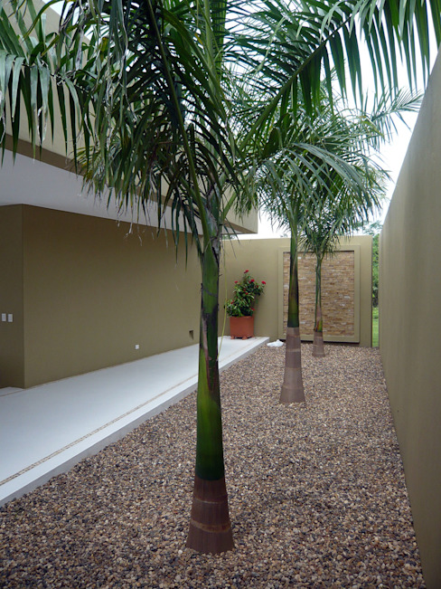 CASA MESA DE YEGUAS V-40 Pasillos, vestíbulos y escaleras de estilo tropical de NOAH Proyectos SAS Tropical Concreto