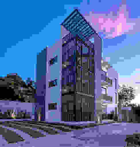 by TAP Taller de Arquitectura y Paisajismo Modern