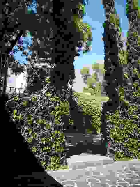 Podado de jardín y construcción de escalón en patio Jardines clásicos de doblev.arq Clásico