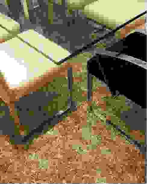 Diseño Global by Romi Estrada Modern Dining Room