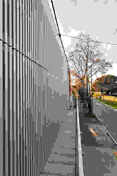 Diseño de 4 Viviendas con Patio en La Plata por por SMF Arquitectos: Casas unifamiliares de estilo  por SMF Arquitectos  /  Juan Martín Flores, Enrique Speroni, Gabriel Martinez,Moderno