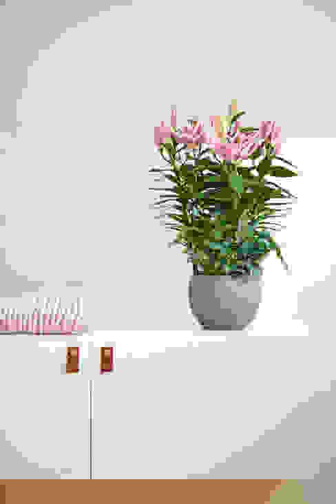Farblich abgestimmt mit der Lilie: modern  von Pflanzenfreude.de,Modern