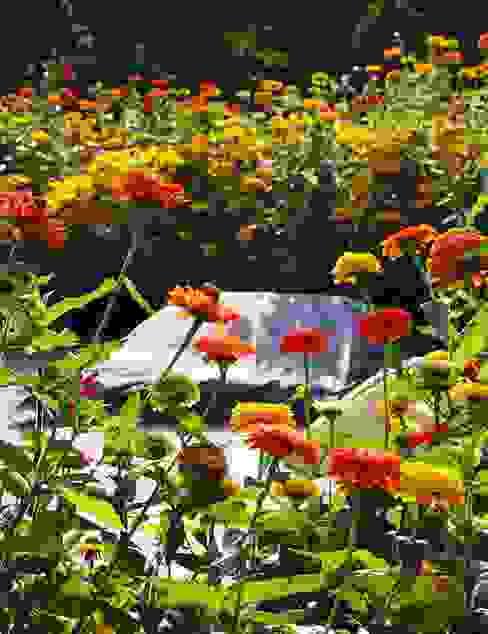 SILENT ISLAND Ruheoasen Petra Pelz Design-natuerlich Minimalistischer Garten