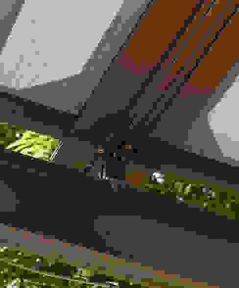 Stabile Pergola Moderner Balkon, Veranda & Terrasse von Markisen Zanker im Raum Stuttgart Modern